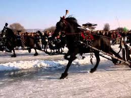 paard-op-ijs